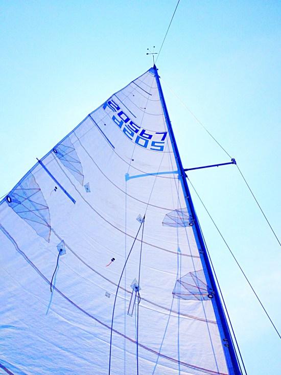 photo of mainsail