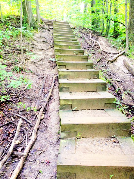 stairs on Stanford Trail