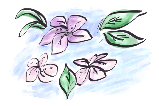 Pink flowers electronic sketch