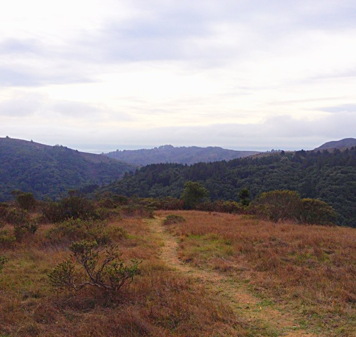 Trail along the ridge offers views of the surrounding wooded hills
