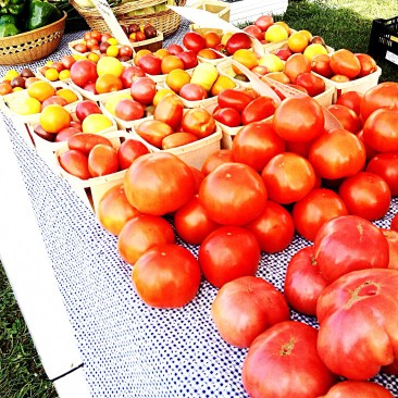baskets of ripe tomatoes fill a table at the farmers market