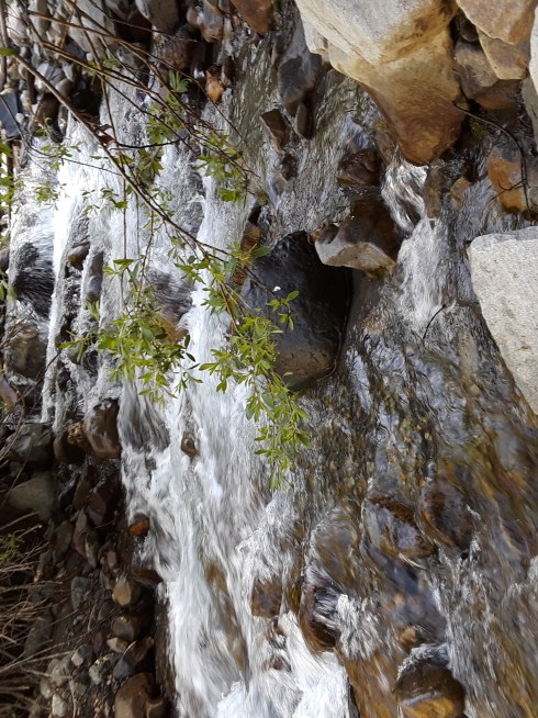 Creek water cascades down the mountainside as the snow melts in the sunshine