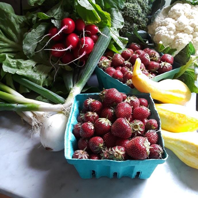 Photo of onion, radishes, cauliflower, broccoli, squash, and strawberries
