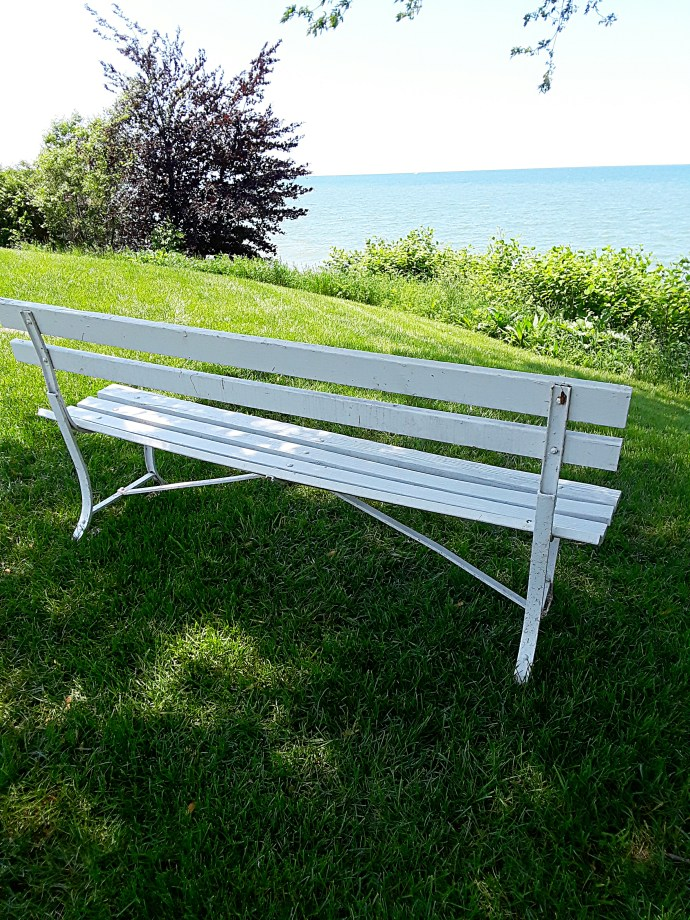 A white park bench overlooks the lake.