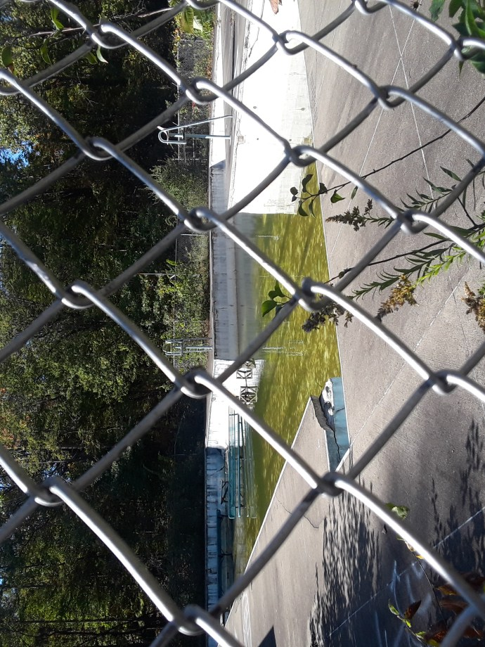 old swimming pool viewed through chain link fence