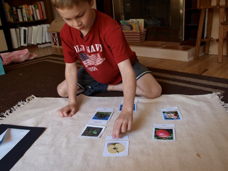 A boy matches word cards to picture cards.