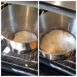 the dough rises in the oven to double its size.