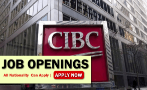 Cibc Job Opportunities