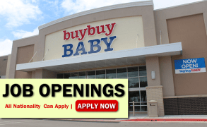 Buy Buy Baby Job Opportunities