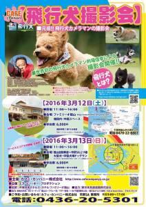20160312dog01