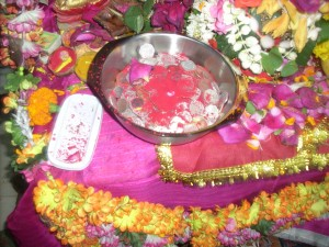 Currency Coins are Used for Archana of the Devi