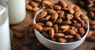Myths Surrounding Protein Consumption
