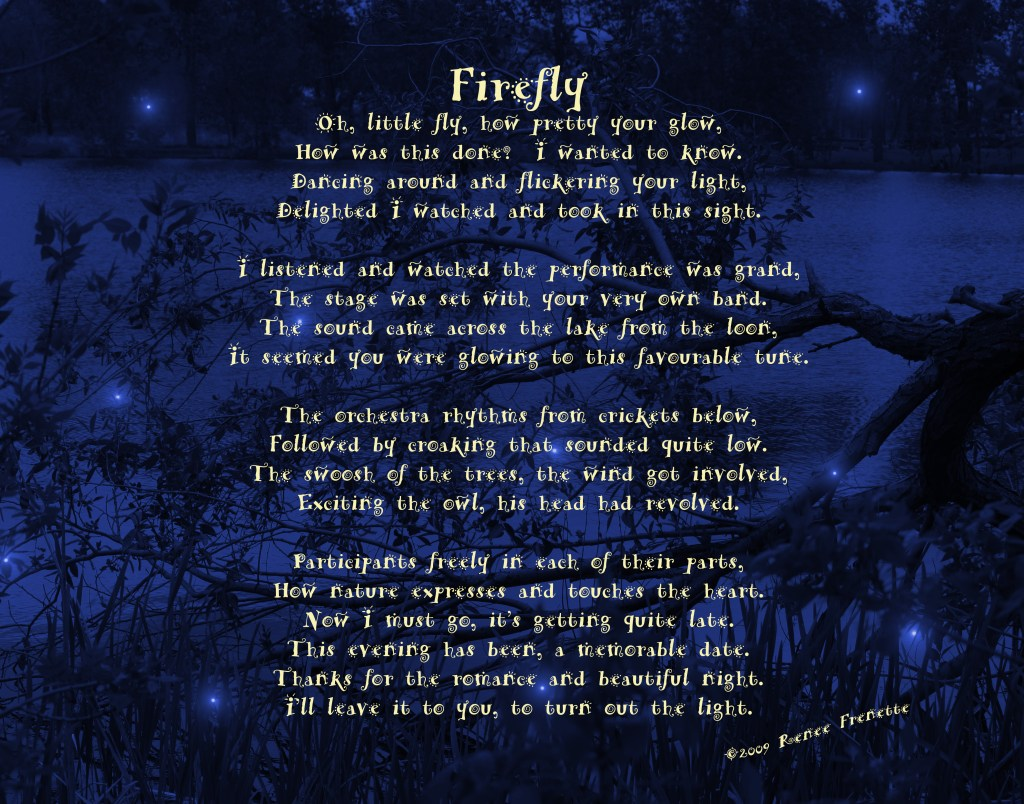 Firefly  A Journey with Art