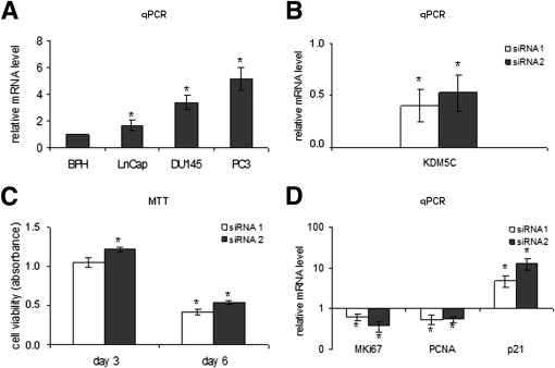 KDM5C Is Overexpressed in Prostate Cancer and Is a