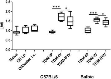 Trehalose 6,6-Dimycolate from Mycobacterium tuberculosis