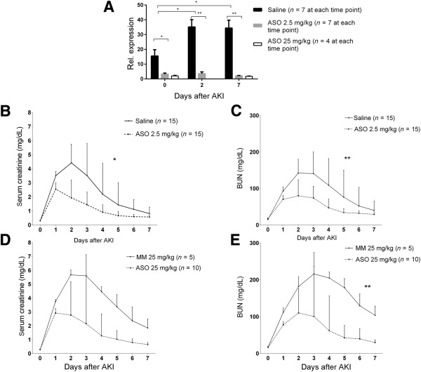 Supplemental Materials for miR-182-5p Inhibition
