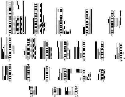 Pediatric High-Grade Astrocytomas Show Chromosomal