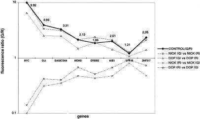 References in Degenerate Oligonucleotide Primed-Polymerase
