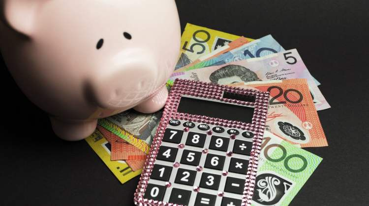 piggy bank, money and calculator