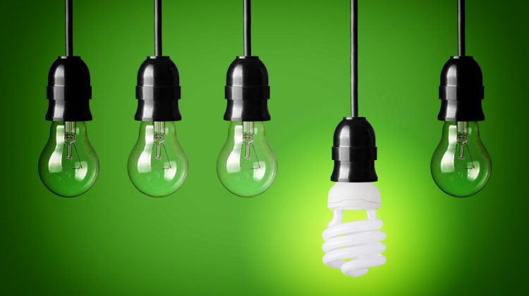 20191453 - idea concept with light bulbs and energy save bulb green background