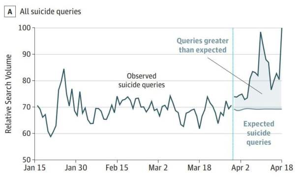 graph of rise in suicide searches