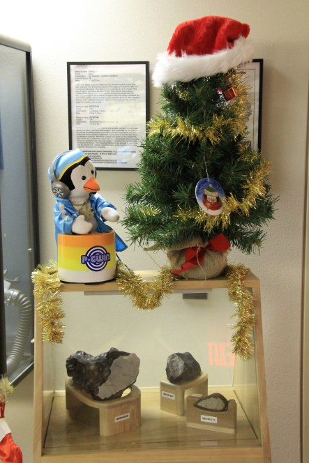 Iron-Nickel meteorites, always under the watch of a festive penguin. © A. Padilla