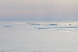 Icebergs frozen in the McMurdo Sound sea ice, Antarctica. © A. Padilla