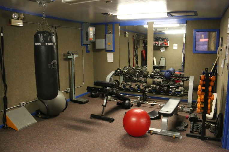 Free weights, dumbbell weights, exercise balls, and other equipment in the stretching and boxing room at the Gerbil Gym.