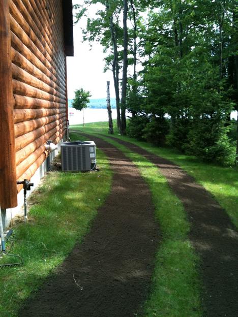 Lawn Repair pic 1