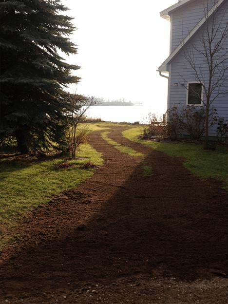 Lawn Repair pic 2