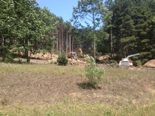 Lot Clearing pic 1