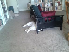 AJ resting