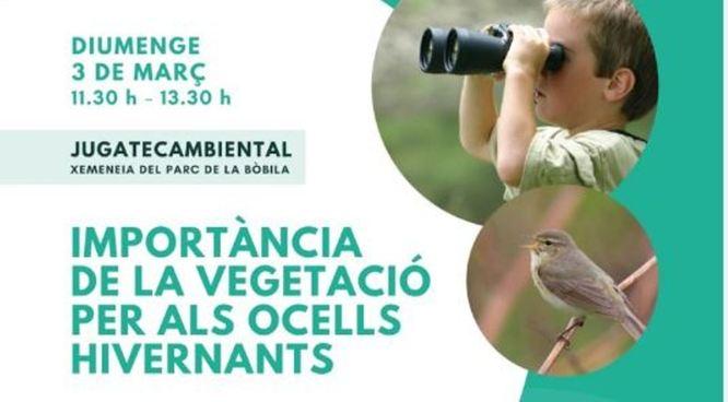 Aquest diumenge, 3 de març, al parc del Torrent de la Font i del Turó de l'Enric de Badalona es farà el taller Importància de la vegetació per als ocells hivernants