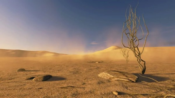 desert landscape with dry dead