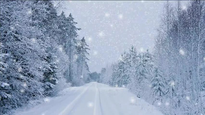 Snowfall Wallpaper Animated Background Winter Video In Snowfall Stock Footage Video