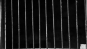 jail prison cell cage bars dark steel iron shutterstock gray obsolete grunge concrete baluster treason pretorius crown lock