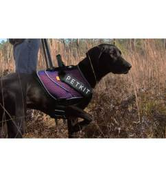 petkit air quad connecting adjustable cushioned chest compression dog harness [ 2312 x 2312 Pixel ]