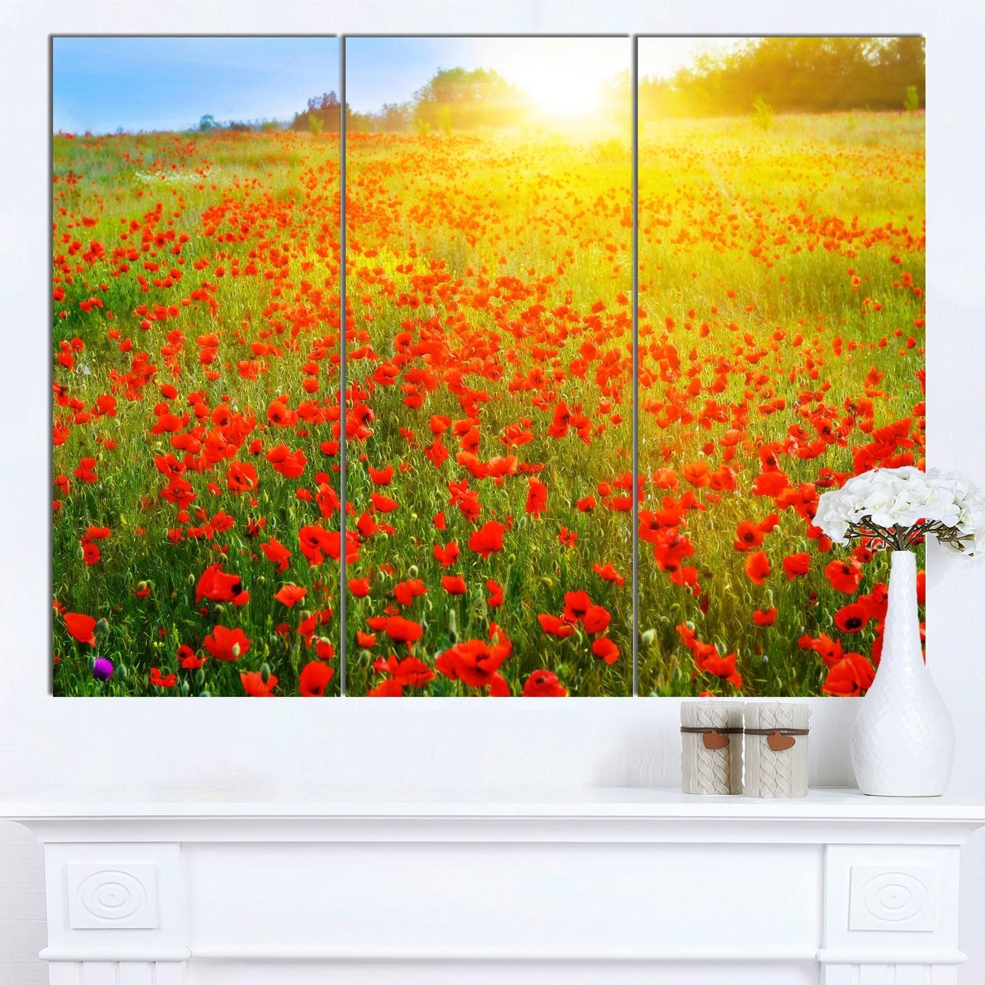 Poppy Fields Canvas Art By Emma Styles Icanvas | iltribuno.com