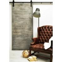 Dogberry Modern Slab 36 x 82 inch Barn Door with Sliding ...