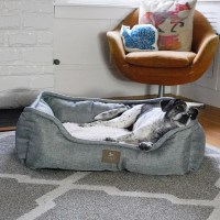 Stuft Dozy Sofa Orthopedic Memory Foam Pet Bed Relieves ...