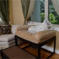 Lacey's Lookout Medium Black Pet Window Seat - Free ...