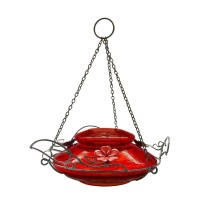 Shop Top Fill Hummingbird Feeder in Green with Leaf Shaped ...