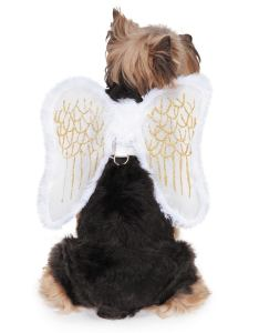 Zack  zoey fur trimmed angel wings harness for dogs and removable also shop rh overstock