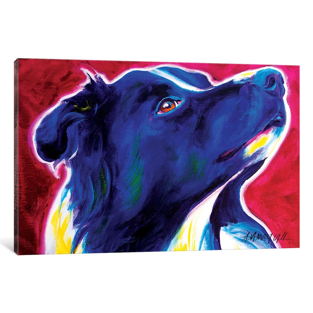 iCanvas 'Bright Future The Border Collie' by DawgArt Canvas Print
