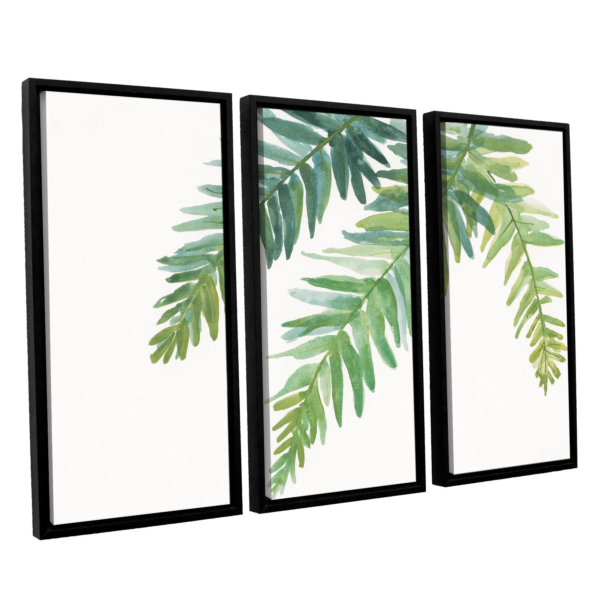 Chris Paschke's 'Ferns I' 3 Piece Floater Framed Canvas Set
