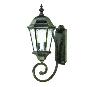 Acclaim Lighting Telfair Collection Wall-Mount 2-Light Outdoor Black Coral Light Fixture