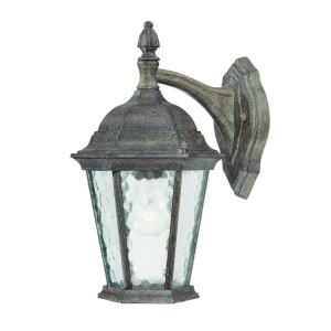 Acclaim Lighting Telfair Collection Wall-Mount 1-Light Outdoor Black Coral Light Fixture