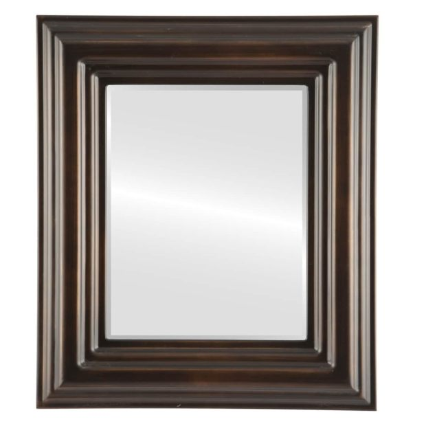 Regalia Framed Rectangle Mirror in Rubbed Bronze - Antique Bronze