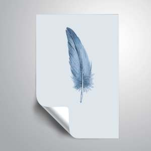 ArtWall 'Feather 01' Removable Wall Art Mural