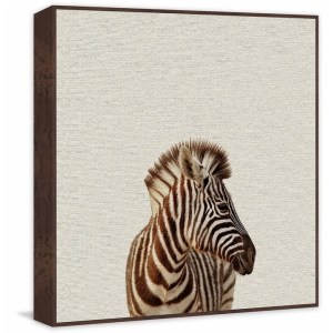 'Zebra Side View' Floater Framed Painting Print on Canvas - Multi-color